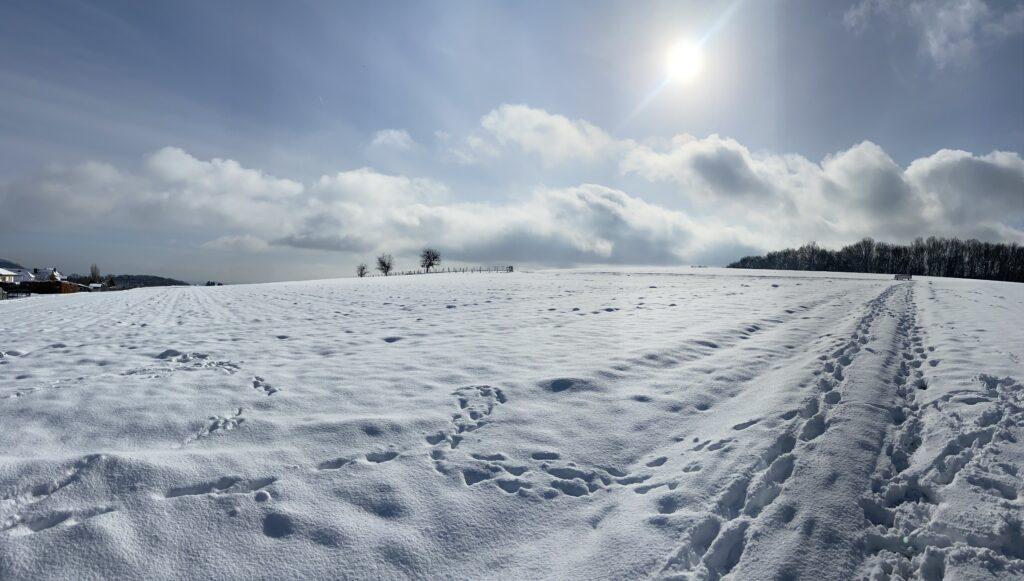 Winter in Bell
